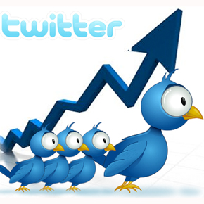 aumentar followers