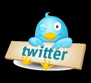 La Bio Perfecta en Twitter