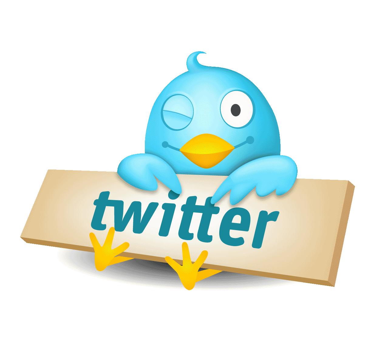 7 consejos para que tu Bio en Twitter sea la mejor
