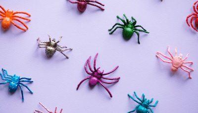 Qué es una araña web y cómo afecta al posicionamiento SEO